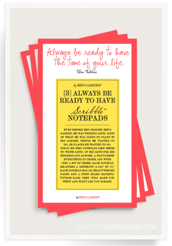 Always Be Ready To Have The Time Of Your Life Scribble Notepad Set of 3