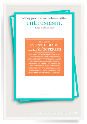 Nothing Great is Ever Achieved Without Enthusiasm Scribble Notepad Set of 2