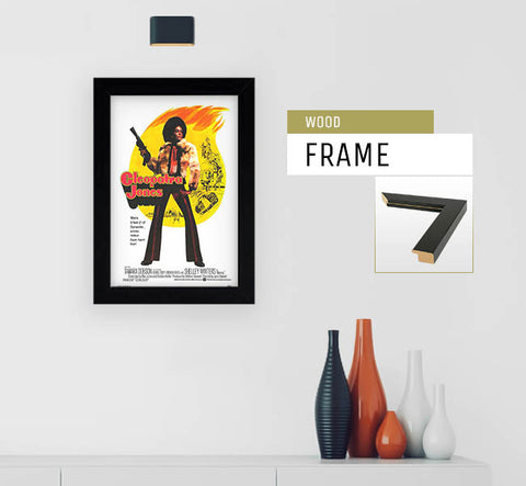 Cleopatra Jones 11 X 17 Movie Poster Mini Movie Posters
