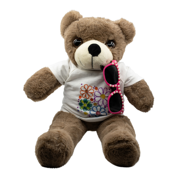 Build a Teddy Bear plus accessories Kit