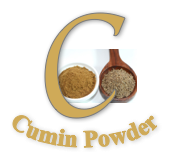 Cumin Powder - Wholesale & Retail