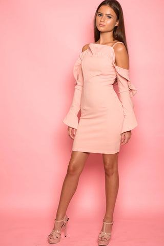 Blush Pink Ruffle Long Sleeve Mini Dress