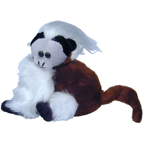 Cotton Top Tamarin Seated Monkey from Colombia - Green Valley Packaging