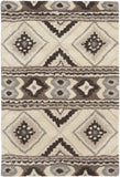 Surya Albuquerque ALQ-402 Light Gray Area Rug 2' x 3'