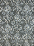 Amer Ascent ASC-289 Carbon Gray Area Rug main image