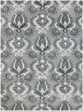 Amer Ascent ASC-291 Silver Area Rug main image
