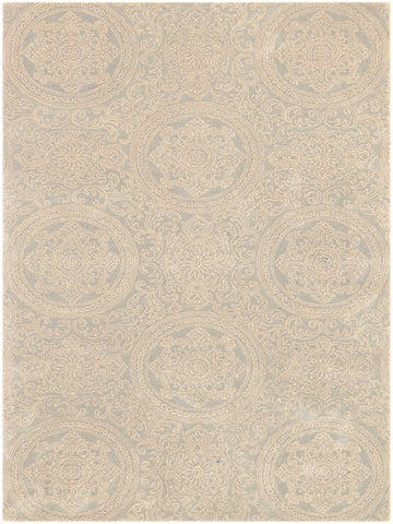 Amer Ascent ASC-34 Platinum Area Rug main image