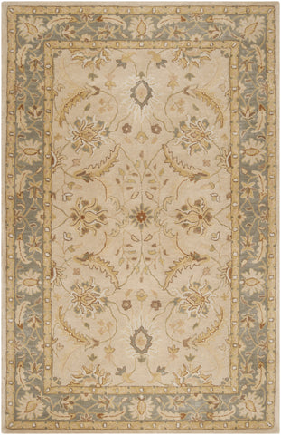 Surya Clifton CLF-1014 Beige Area Rug main image