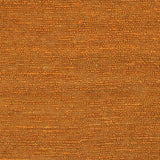 Surya Continental COT-1934 Burnt Orange Hand Woven Area Rug Sample Swatch