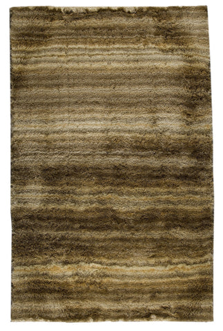MAT Surface Delhi Beige/Brown Area Rug main image