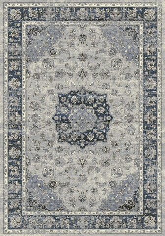 Dynamic Rugs Ancient Garden 57559 Silver/Blue Area Rug main image