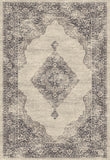 Dynamic Rugs Farahan 95024 Grey/Cream Area Rug main image