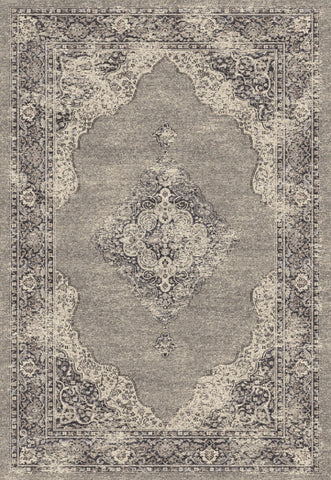 Dynamic Rugs Farahan 95024 Grey Area Rug main image