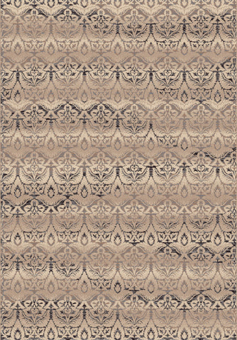 Dynamic Rugs Treasure 7911 Beige Area Rug main image