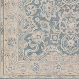 Artistic Weavers Ephesus Candace Light Blue/Beige Multi Area Rug Swatch