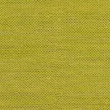 Surya Fargo FARGO-110 Lime Hand Woven Area Rug Sample Swatch