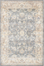 Karastan Euphoria Liffey Willow Gray Area Rug