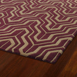 Kaleen Revolution REV01-87 Plum Area Rug Close-up Shot