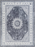 Artistic Weavers Saturn Chase Gray/Charcoal Area Rug main image