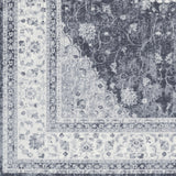 Artistic Weavers Saturn Chase Gray/Charcoal Area Rug Swatch