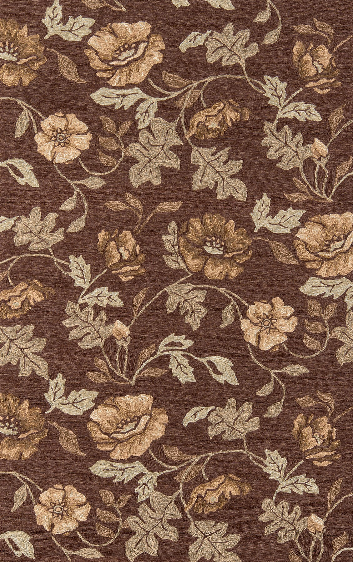 Momeni Veranda VR-24 Brown Area Rug main image