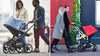 Bugaboo Fox vs. Bugaboo Cameleon3 Plus Stroller Comparison