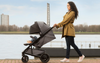 Infant Car Seats Compatible with Nuna TAVO Stroller