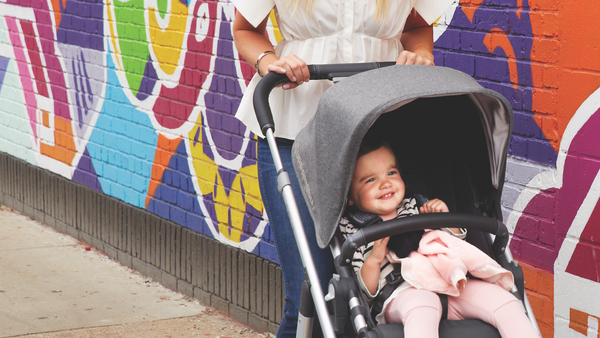 does the uppababy cruz seat fit the uppababy vista