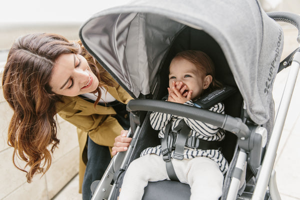 What does Uppababy Vista come with?
