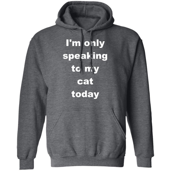 Dark Heather Cat Pullover Hoodie - I'm Only Speaking To My Cat Today