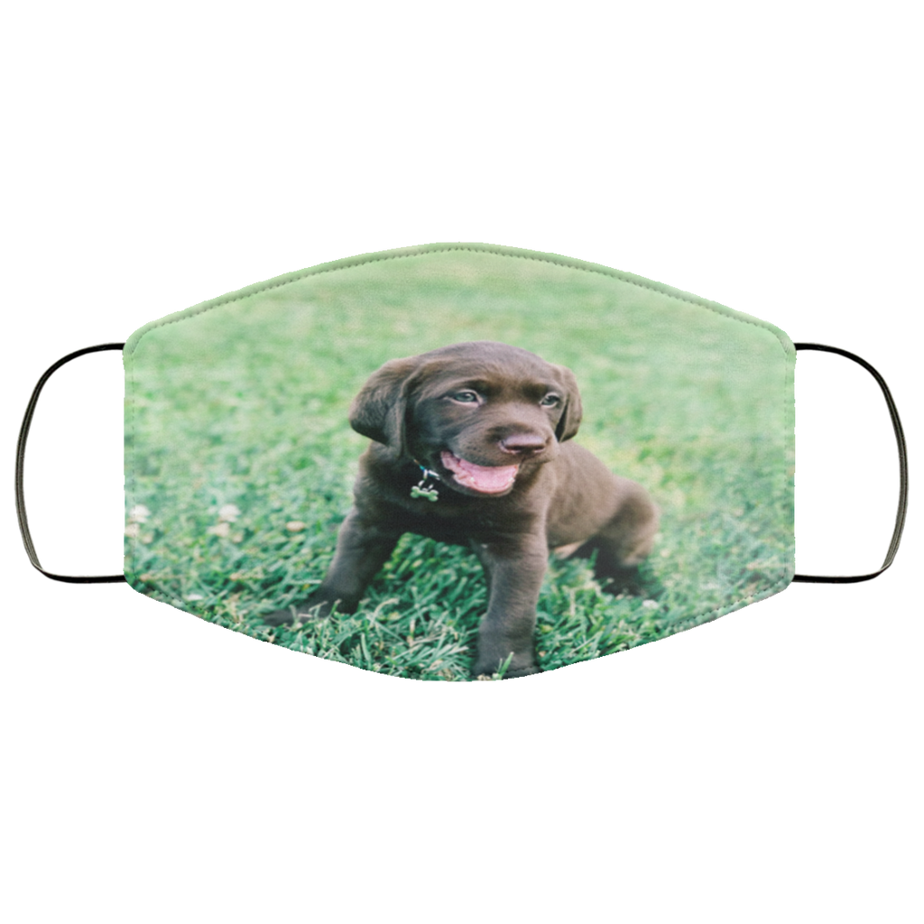Lightweight Chocolate Lab Pup Face Mask