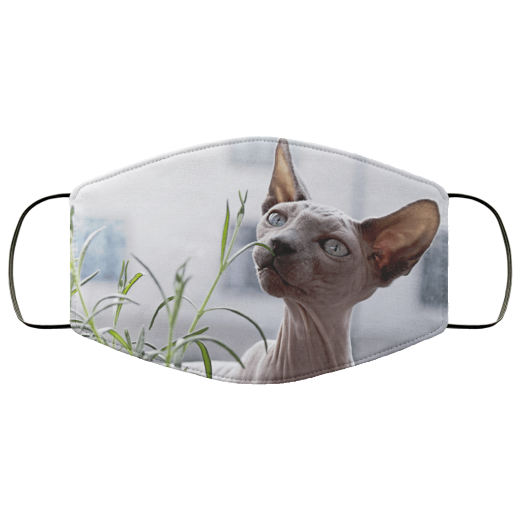 Lightweight Sphynx Cat Adult Face Mask