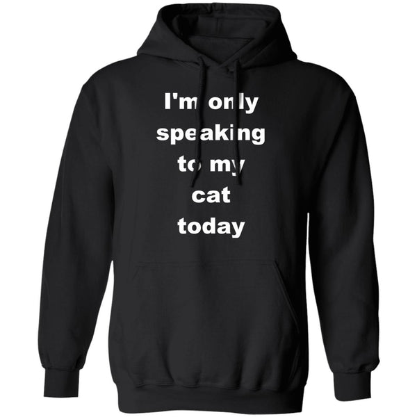 Black Cat Pullover Hoodie - I'm Only Speaking To My Cat Today