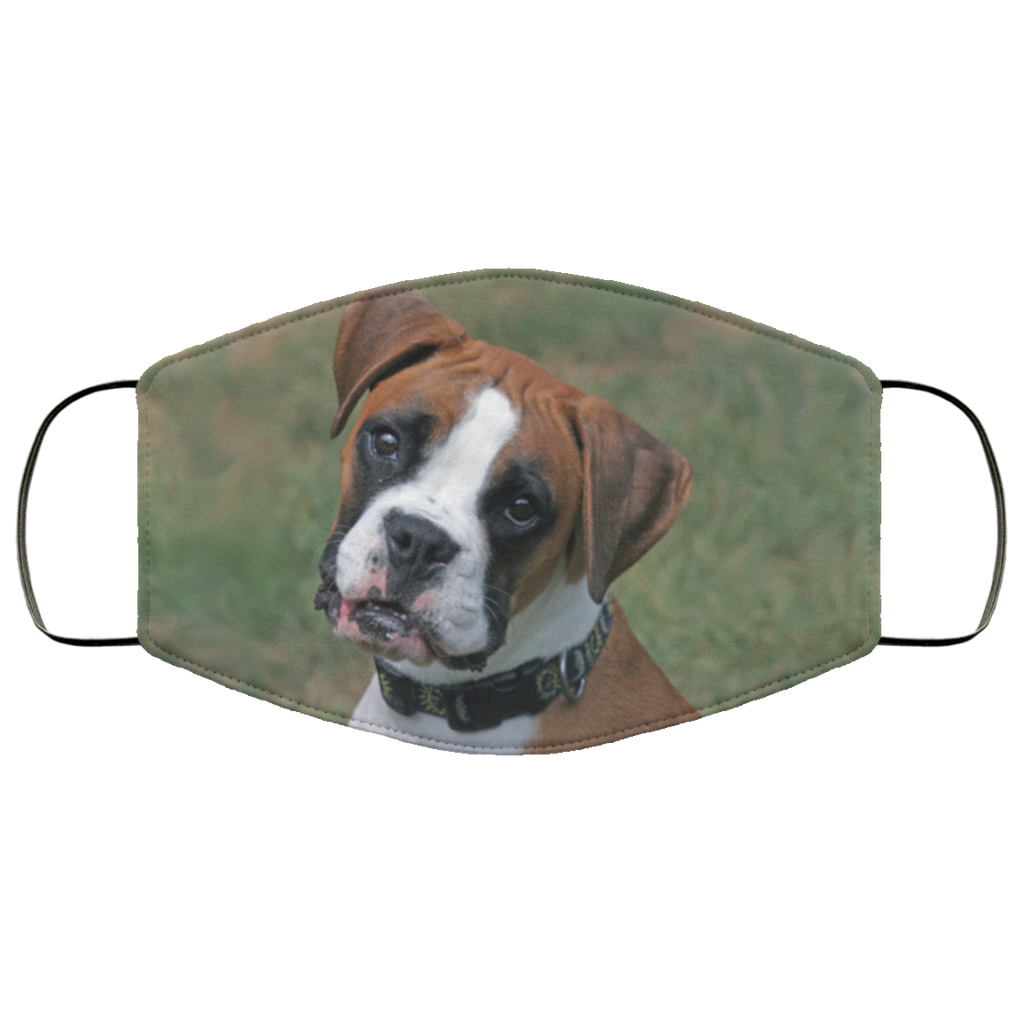 Boxer Face Mask