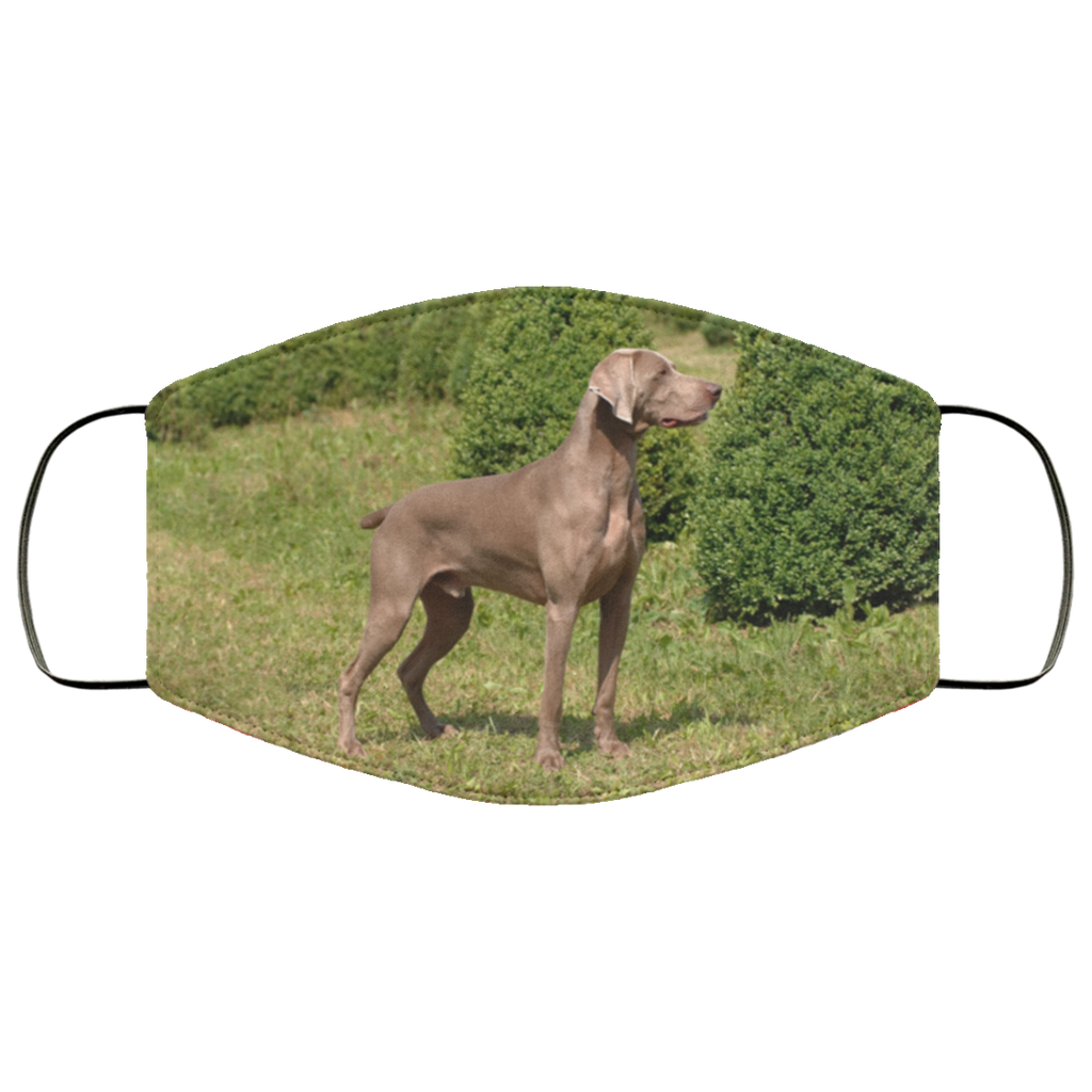 Weimaraner Portrait Face Mask