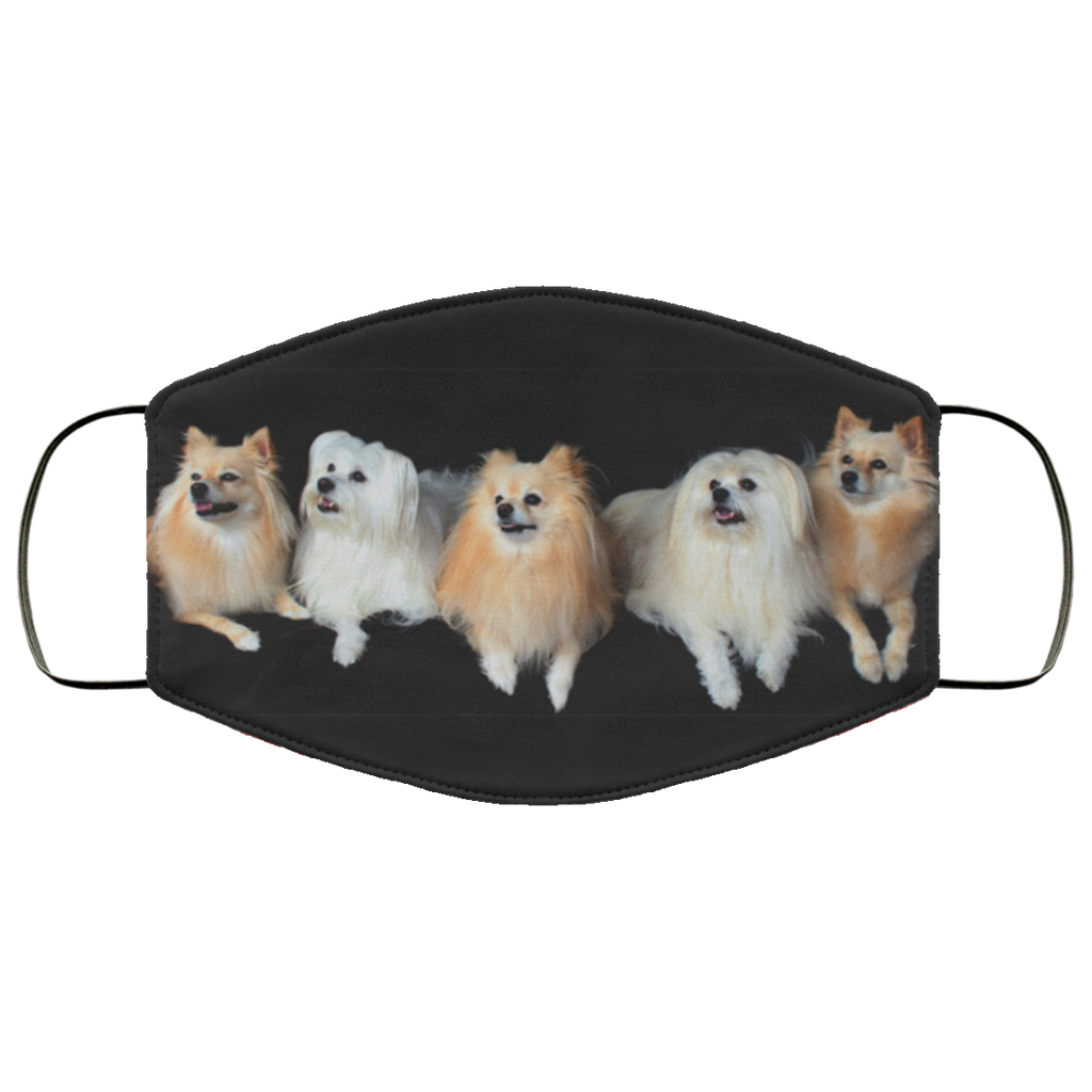 Pomeranian Face Mask