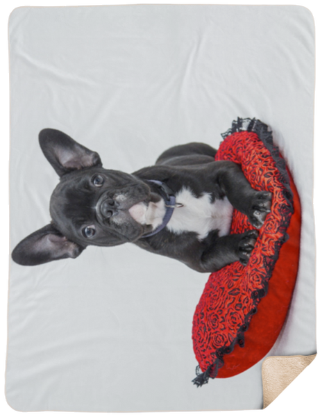 French Bulldog Sherpa Blanket 60x80
