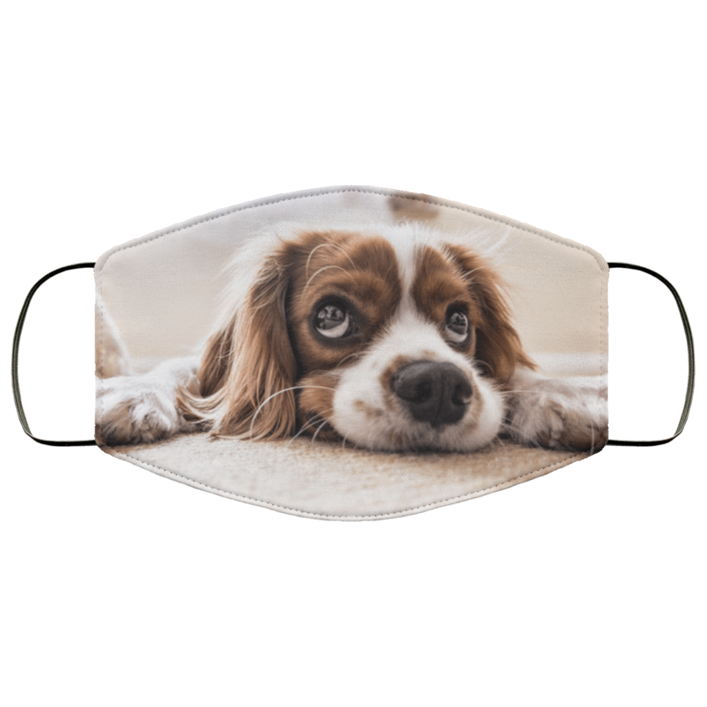 cocker spaniel face mask