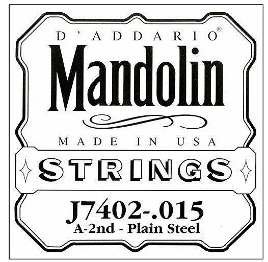 A MANDOLIN DOUBLE STRING, PLAIN STEEL