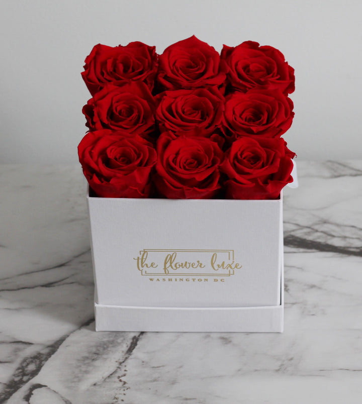 Classic Infinity Roses