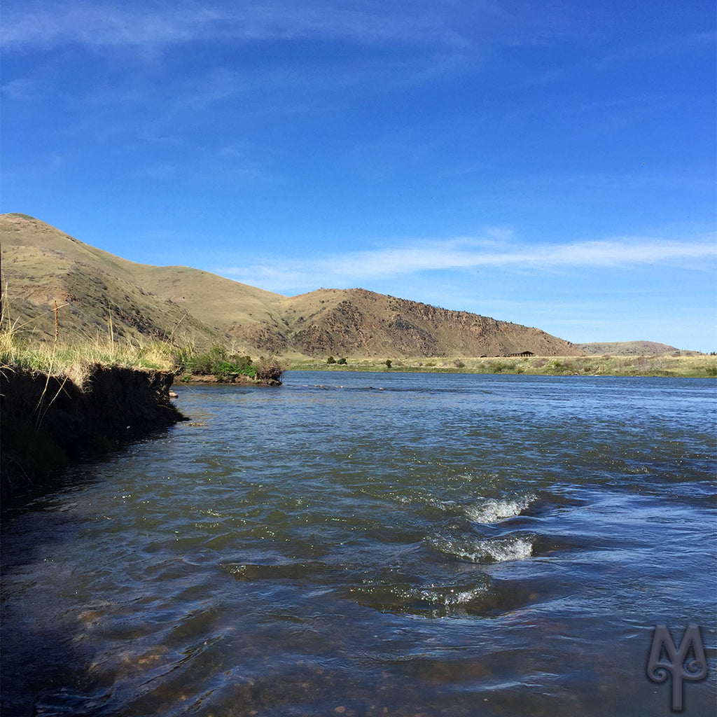 Lower Madison River, Water Level Is Rising