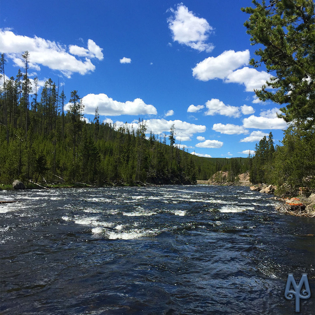 One Sunny Day On The Firehole River