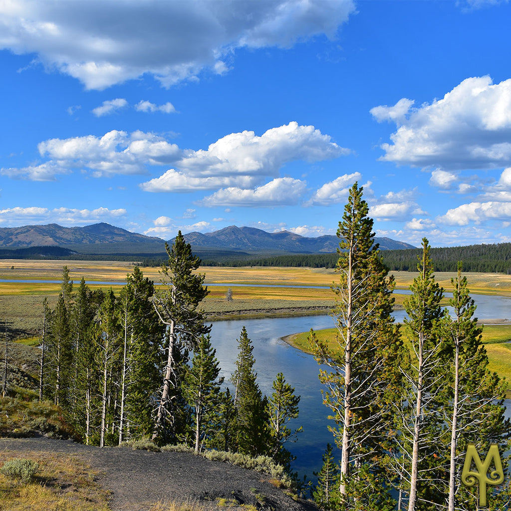 Summer Winds Down On Yellowstone National Park