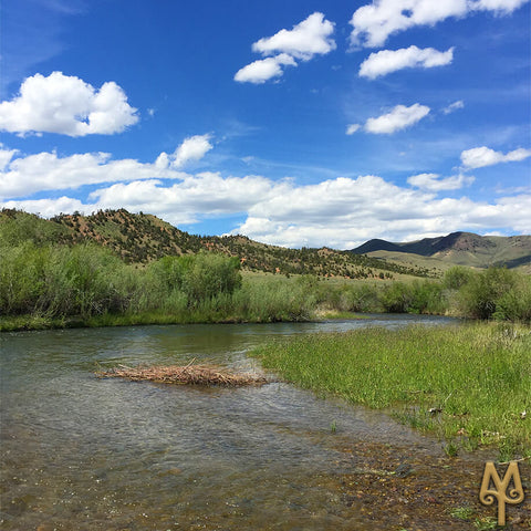 The Beaverhead River, Southwest Montana, photo by Montana Treasures
