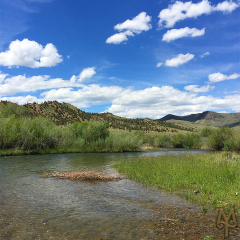 Junne on the Beaverhead River, photo by Montana Treasures