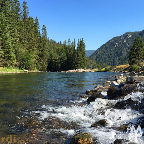 Summer on the Gallatin River, photo by Montana Treasures