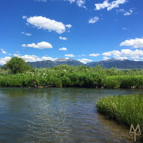 Madison River, Valley Garden, Jeffers, Montana, photo by Montana Treasures