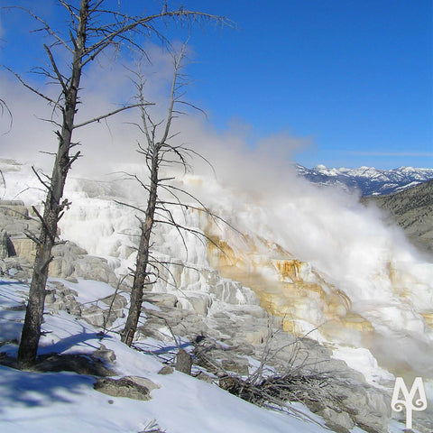 Early Spring at Mammoth Hot Springs, Yellowstone National Park