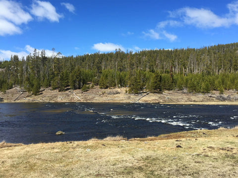 The Firehole River, Fountain Flat Drive, Yellowstone National Park