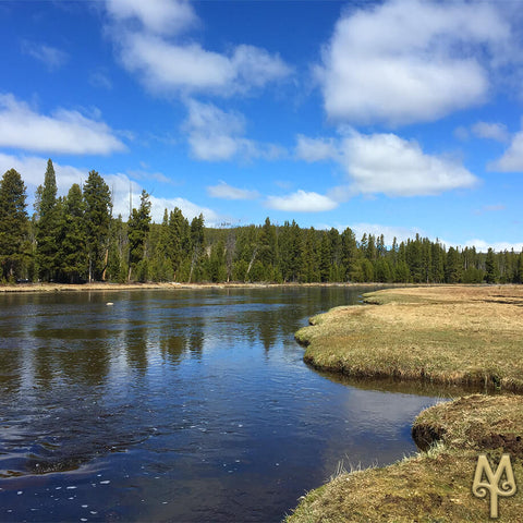 The Firehole River, Yellowstone National Park, photo by Montana Treasures